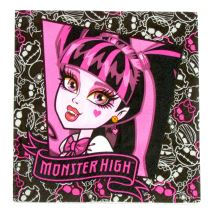 UBROUSKY 33x33cm - MONSTER HIGH třívrstvé - Monster high licence